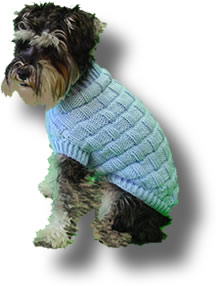 Knitting Pattern For Border Collie Dog : Original Knit Dog Sweater Patterns!